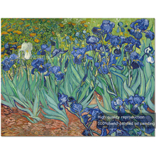 Reproduction High Quality Irises Flowers Oil Painting High Quality Vincent Van Gogh Irises Oil Painting For Home Decoration