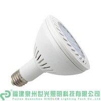 Free shipping 2pcs/lot LED Par30 36W E27 Base SMD Warm White, super bright , LED Spot Bulb Par Light led lights