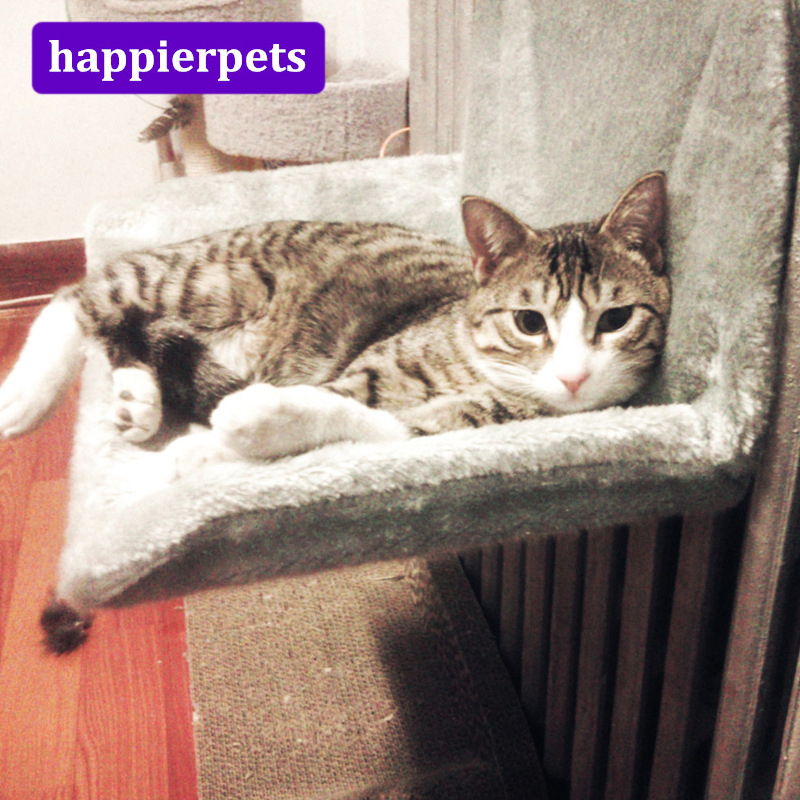 Foldable Cats Furniture Funny Hammock Cat Hanging Bed Comfortable Soft Cat House Bed For Sleeping Jumping Playing Training Hpc09