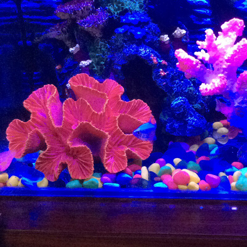 Popular coral reef decor buy cheap coral reef decor lots for Artificial coral reef aquarium decoration