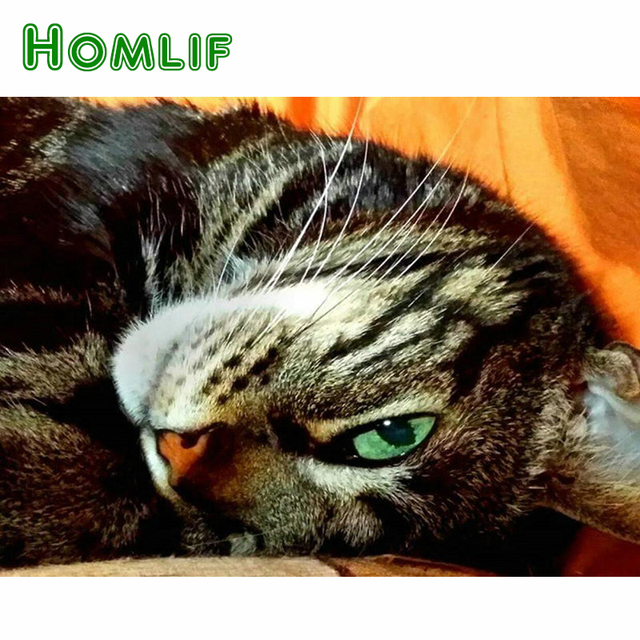 HOMLIF 5d diy diamond painting cute cat picture full square/round diamond embroidery animal wall stickers home decor gift art