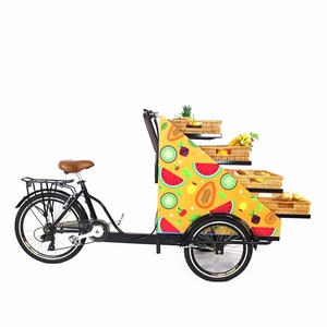 Adult electric three wheel tricycle food cart fruit truck|Food Processors| |  -