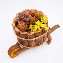 Caioffer Natural Creative Round Cask Shape Resin Wooden Flower Pots Micro Landscape Ornaments Planter Pot For Garden Home CJ003