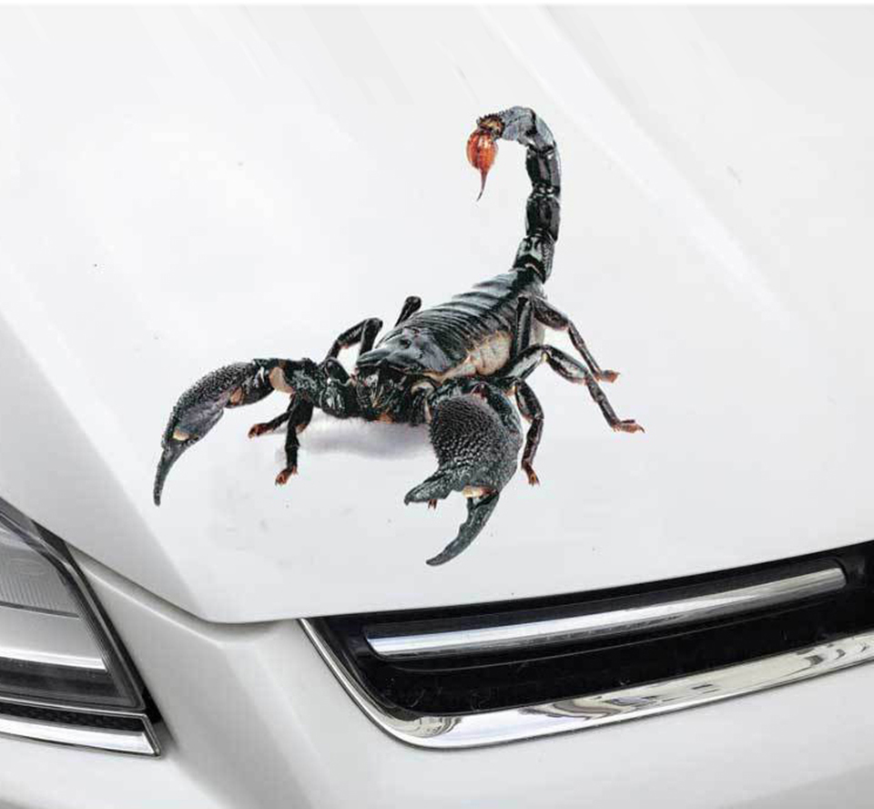 Fashion 3D Scorpion Car Bumper Stickers Vinyl Decal Sticker Scratch Cover OCT 31-in Car Stickers from Automobiles & Motorcycles