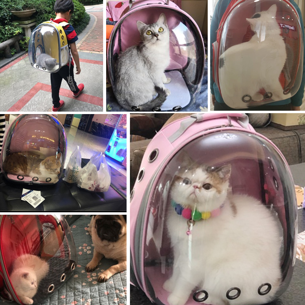 Cat Carrier Bag Breathable Transparent Puppy Cat Backpack Cats Box Cage Small Dog Pet Travel Carrier Handbag Space Capsule 5