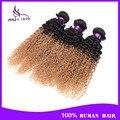 Grau 7a kinky curly ombre extensões de cabelo TIB / 27 brasileiro cabelo virgem tecer cabelo