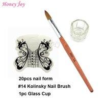 Pro акриловые ногти инструмент комплект размер № 14 Колонок Соболь акриловых ногтей кисти + 20 штук белая бабочка Форма ногтей + Стекло чашки