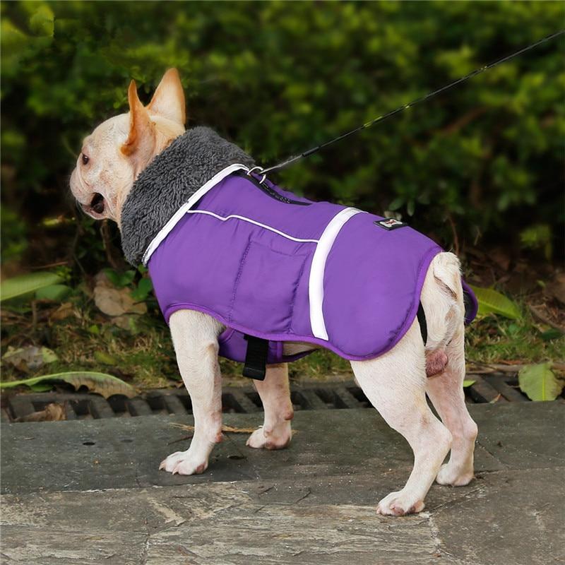Dog Clothes (31)