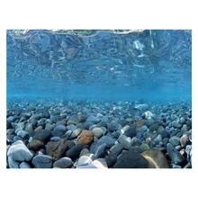 """9078 19,"""" x 48"""" двухстороннее украшение аквариума морской зеленый Пейзаж Плакат рыбный бак фоновая картина настенный Декор Глянцевая"""