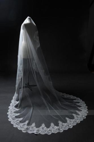 Cathedral wedding veil, chapel lace bride vail, embroidered hem, floral lace, light ivory &comb  long veils