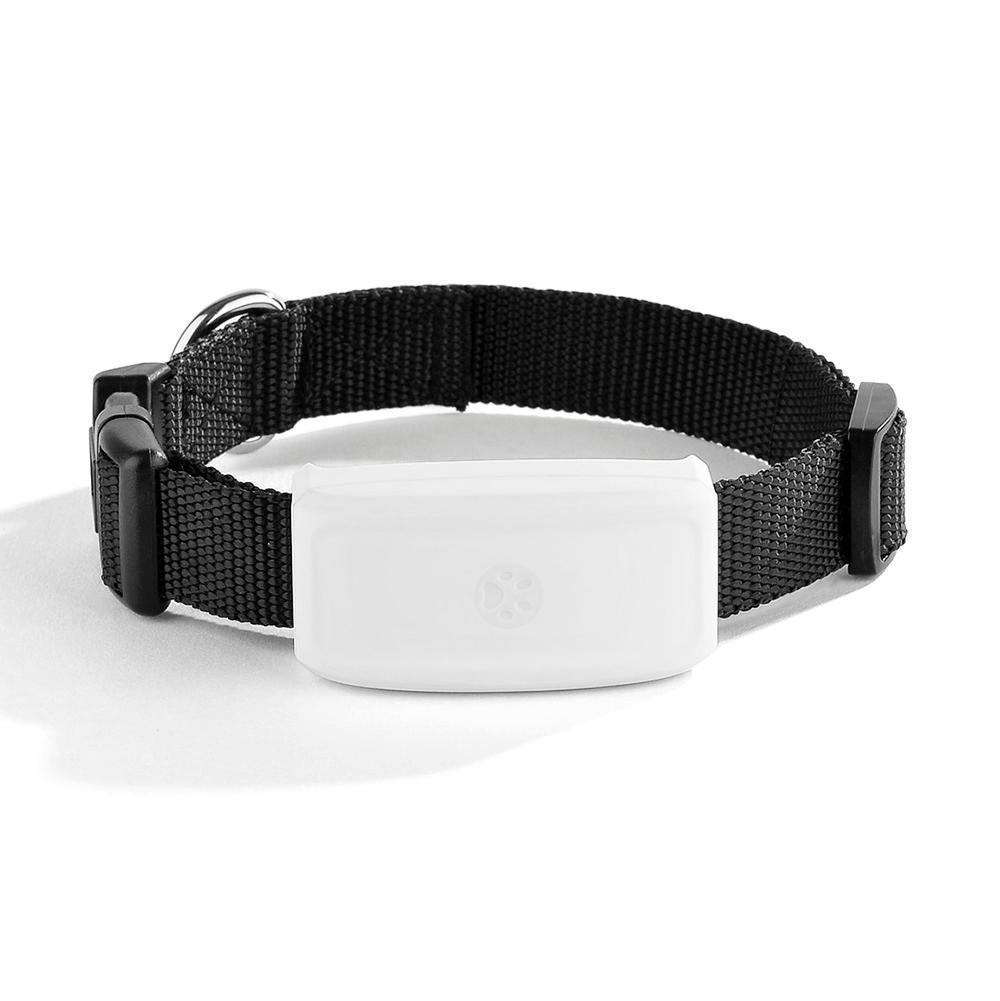 2017 Mini pet dog cat animal gps tracker GPS locator tkstar tk911 the upgrade tk909 waterproof