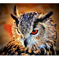 5d DIY Diamond Painting Animals Crystal Diamond Embroidery Beautiful Owl Beads Craft Needlework Home Decorative