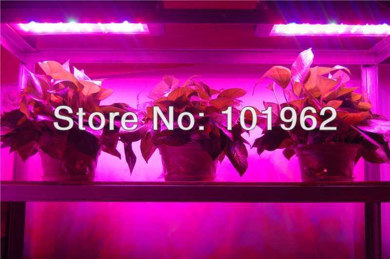 Wholesale LED grow lamp 2pcs 165W for plants