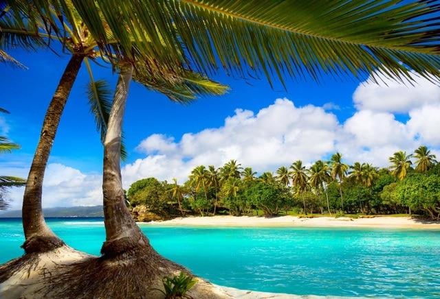 Laeacco Sunny Cloudy Blue Sky Sea Beach Palm Trees Photography Backgrounds Vinyl Custom Photographic Backdrops For
