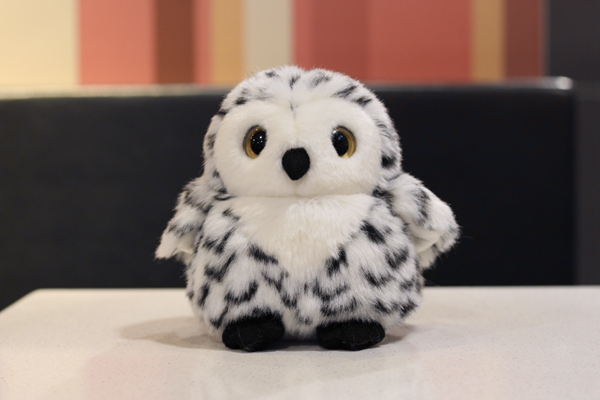 Aliexpresscom  Buy 18Cm Cute Lifelike Snowy Owl Stuffed -5254