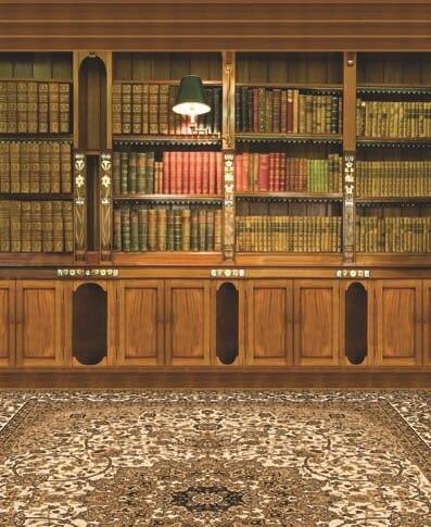 study background cupboard books antique floor studio bookcase cabinet carpet backdrops bookshelf backgrounds vinyl zoom retro portrait 8x15 8x12 cloth