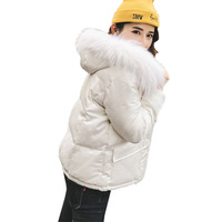 Hot Sale 2017 New Slim Winter Women Down Jacket High Quality Hooded Female Parka Big Fur