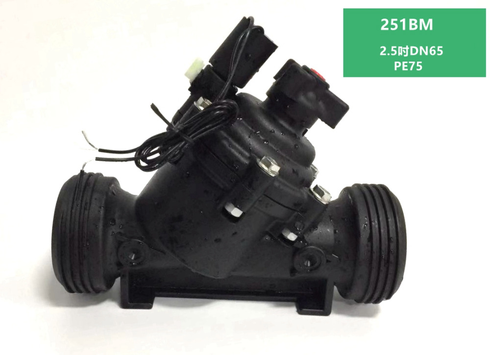 Zanchen BM Serie Kunststoff Control Ventil 2,5