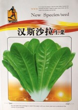 The original packaging Vegetable seeds Hans salad of lettuce seed varieties Easy to grow The four seasons to about 5 grams