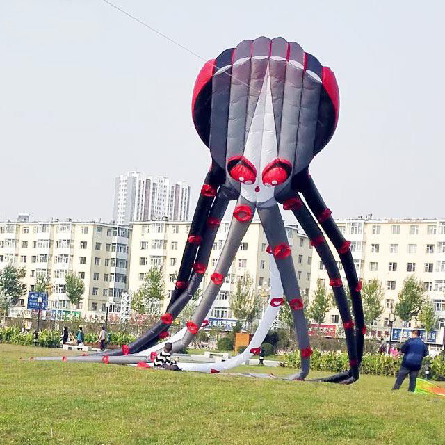 Free Shipping High Quality 26m 20m Capricorn Octopus Kite Large Soft Kite Ripstop Nylon Fabric Kite With Handle Line Walk In Sky