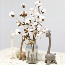 3Pcs 21 inch Naturally Dried Cotton Stems Flower Artificial Foliage Home Office Garden Decoration indoor L528