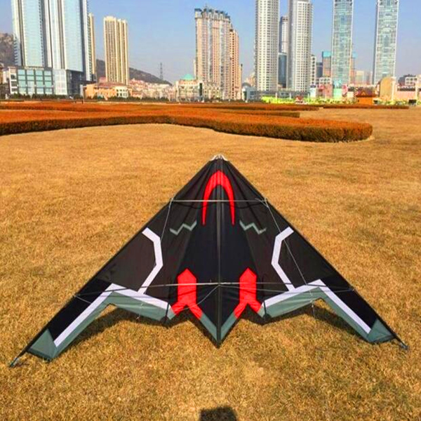 Livraison gratuite de haute qualité 2.4 m avion double ligne cerf-volant pilotable surf avec poignée cerfs-volants pour vente parachute puissance cerf-volant lignes