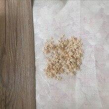 HappyKiss натуральная морская звезда Морская раковина раковины Природные морские звезды орнамент аксессуары свадебное украшение