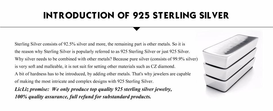 LicLiz Unique 925 Sterling Silver Circle Simple Strip Bar Pendant Necklaces Adjustable Chain Necklaces for Women Wedding LN0194 11