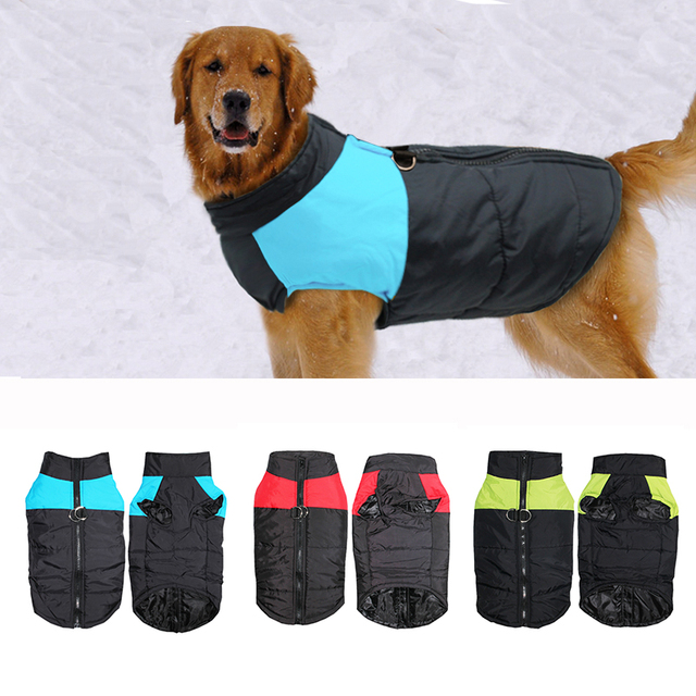 Impermeabile Pet Dog Puppy Vest Giacca Chihuahua Abbigliamento Caldo Inverno Ves