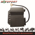 CDI for DERBI / RIEJU / YAMAHA DTR mopeds with AM6 Engines with DUCATI ignition