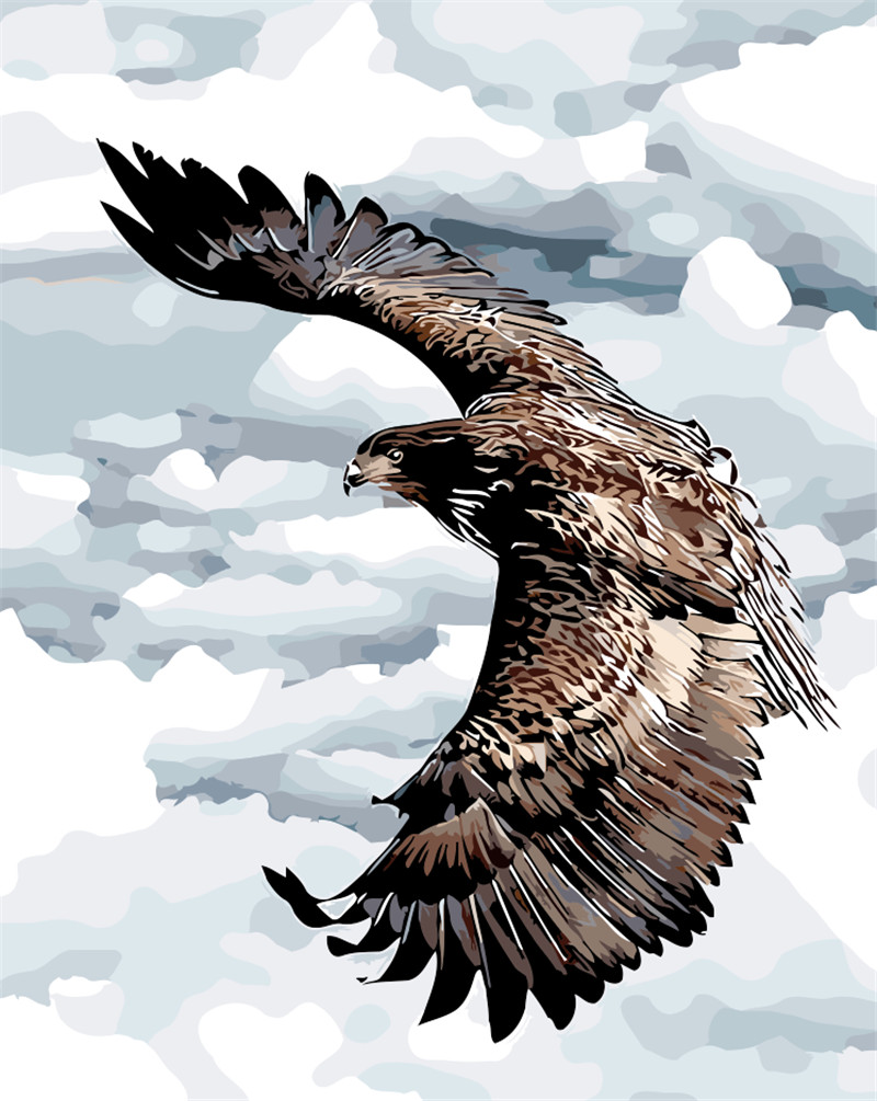 Soaring Eagle In The Sky DIY Painting By Numbers Natural Birds Drawing Without