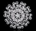 A granel por atacado das mulheres da forma de prata banhado broches de casamento do pavão cristal rhienstone broche e pinos 1 pc/lote