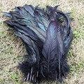 Comercio al por mayor 100 unids/lote Hermosas plumas de Gallo negro natural 30-35 cm 12-14 Pulgadas