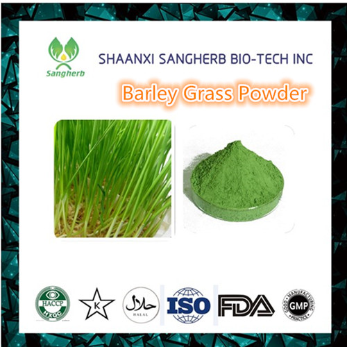 Loss Weight improves energy and digestion strengthens the immune system barley grass powder 1kg Free Shipping 500g organic barley grass powder barley leaves powder good for men and women