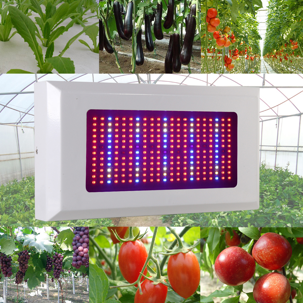 Full Spectrum 300W Led Grow Light Red Blue UV IR LED Growing Lamp for Hydroponics Flowers Plants Vegetables Greenhouse wholesale 300w high power led grow light red blue uv ir for hydroponics greenhouse grow tent 300w plant lamp free shipping