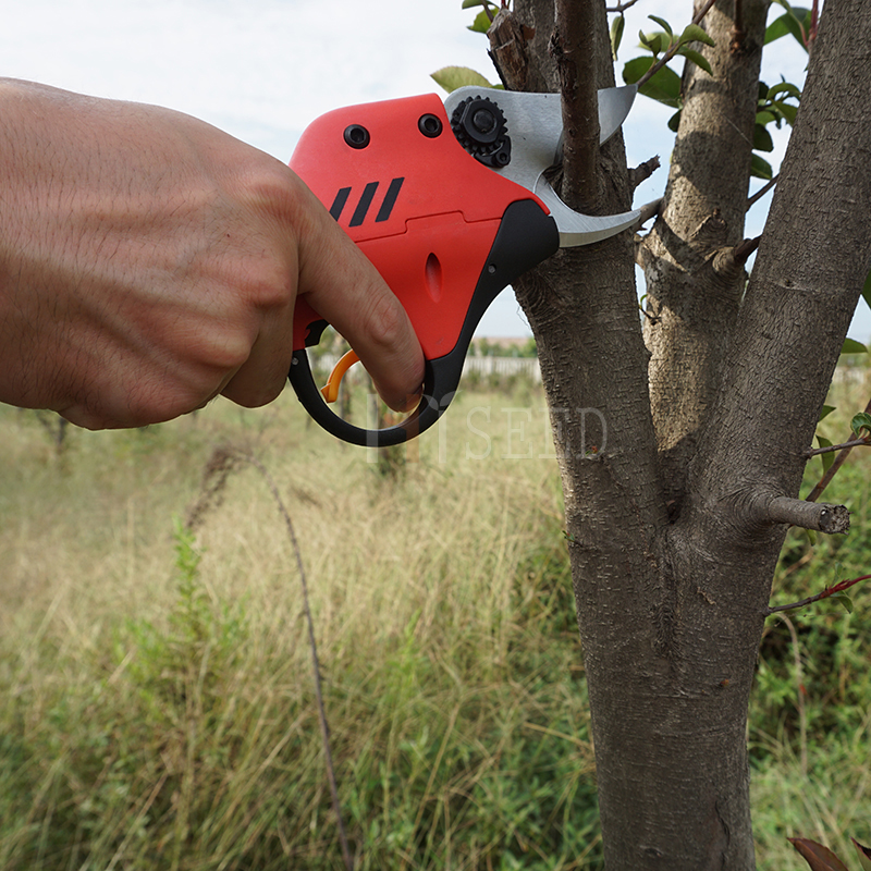 Cizalla de podadora eléctrica de venta caliente para viñedo y rama - Herramientas de jardín - foto 4