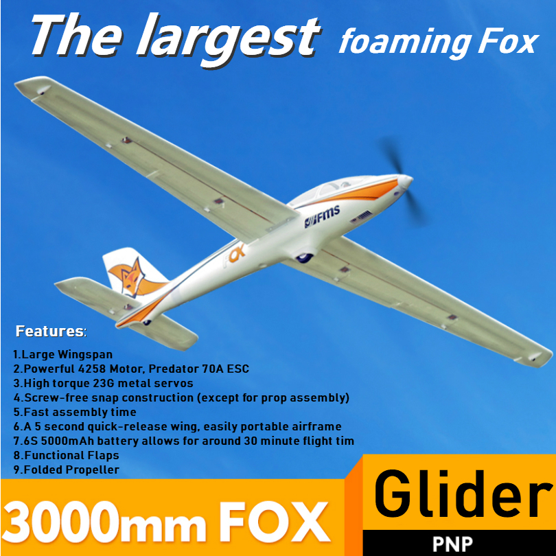 FMS RC avion planeur 3000mm 3m renard avec rabats 5CH 6S EPO PNP grande grande taille formateur voilier passe-temps modèle avion Avio