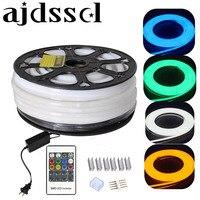 https://ae01.alicdn.com/kf/HTB1ri3wneuSBuNjSsziq6zq8pXaE/220-110-F-Lex-LEDNeon-RGB-25-50-100.jpg