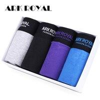 Ark Royal Comfortable Panties Hot Sale Men Male Underwear Men S Boxer Underwear Sexy Man Underwear