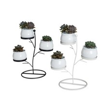 Succulent Plants Flower Pot Iron Frame Set Innovative Geometric Branches Small Round Ceramic And Plant Stand