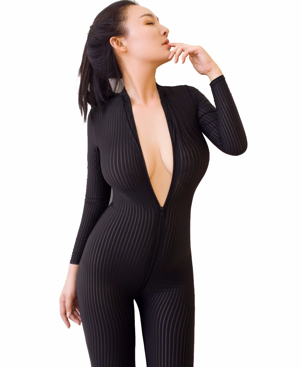 Sexy Sheer Vertical Stripes Wild Up to Crotch Zipper Snug Fit Catsuit Bodysuit Tights Jumpsuit Zentai Onesie