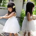 Девочки принцесса платье дети в одежда девочки-младенцы одежда дети пачка платье девочка шифон платье с цветок