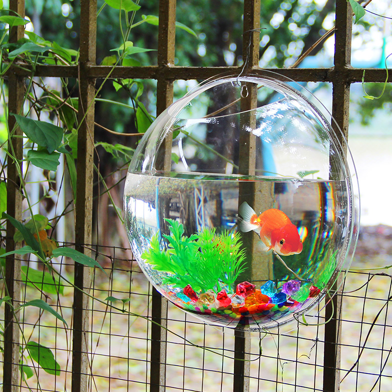 Popular Hanging Aquarium Buy Cheap Hanging Aquarium Lots