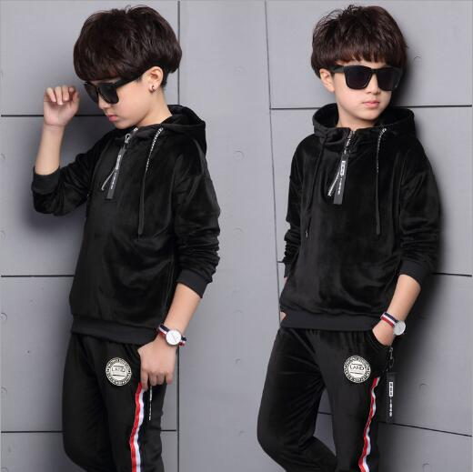 2018 Children Sports Suit for boys Velvet Embroidery Animal Long Sleeve Shirt + Pant Set Boy Sweatsuit Autumn Kids Clothing Set