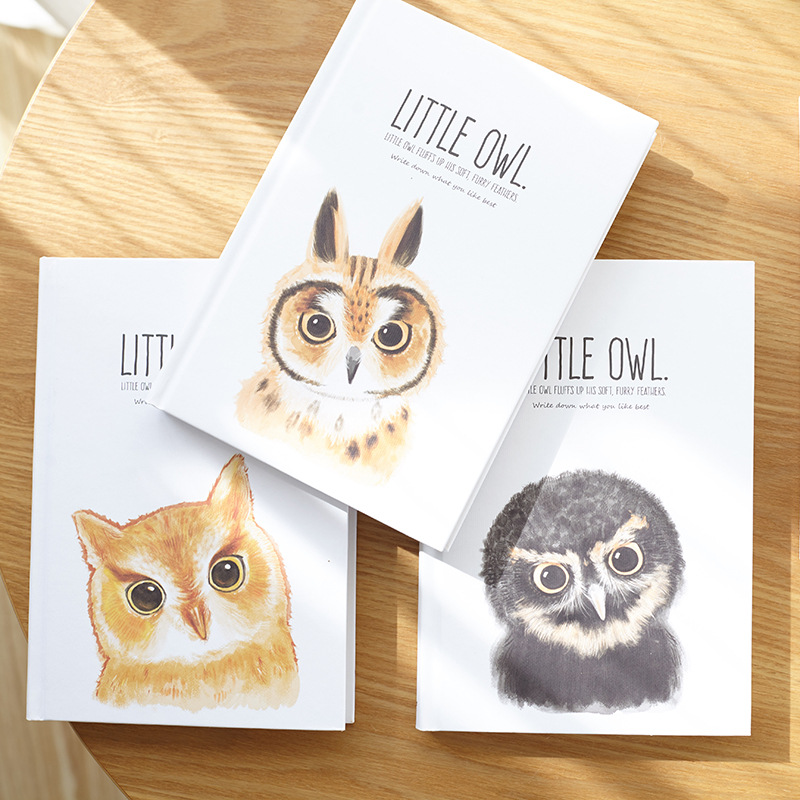 quot Little Owl quot Big Hard Cover Study Diary Cute Journal Beautiful Notebook Blank Papers Notepad in Notebooks from Office amp School Supplies