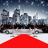 10X10ft Red Carpet Photo Backgrounds Seamless Vinyl And Polyester Photography Backdrops Customized Wedding Backdrop Background