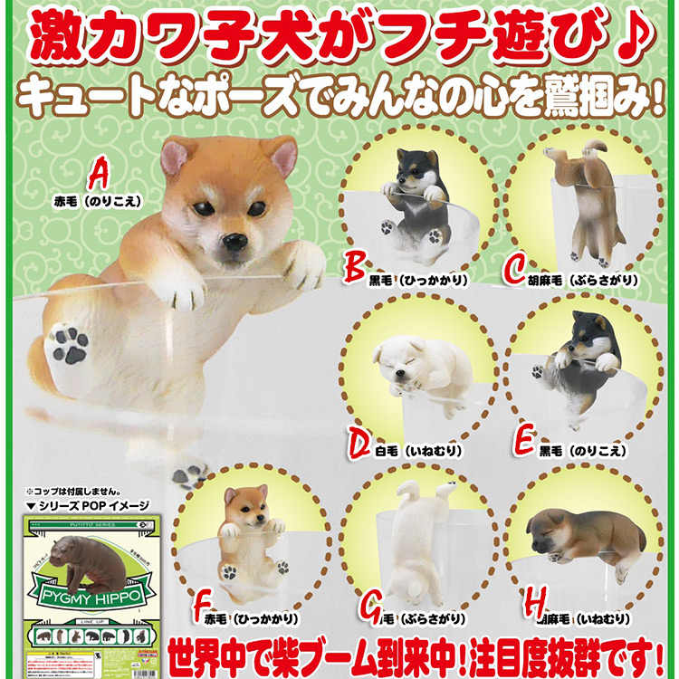 Japan Genuine capsule toys cute pets puppy 8 Shiba Inu on the edge of cup PUTITTO glass gashapon figures