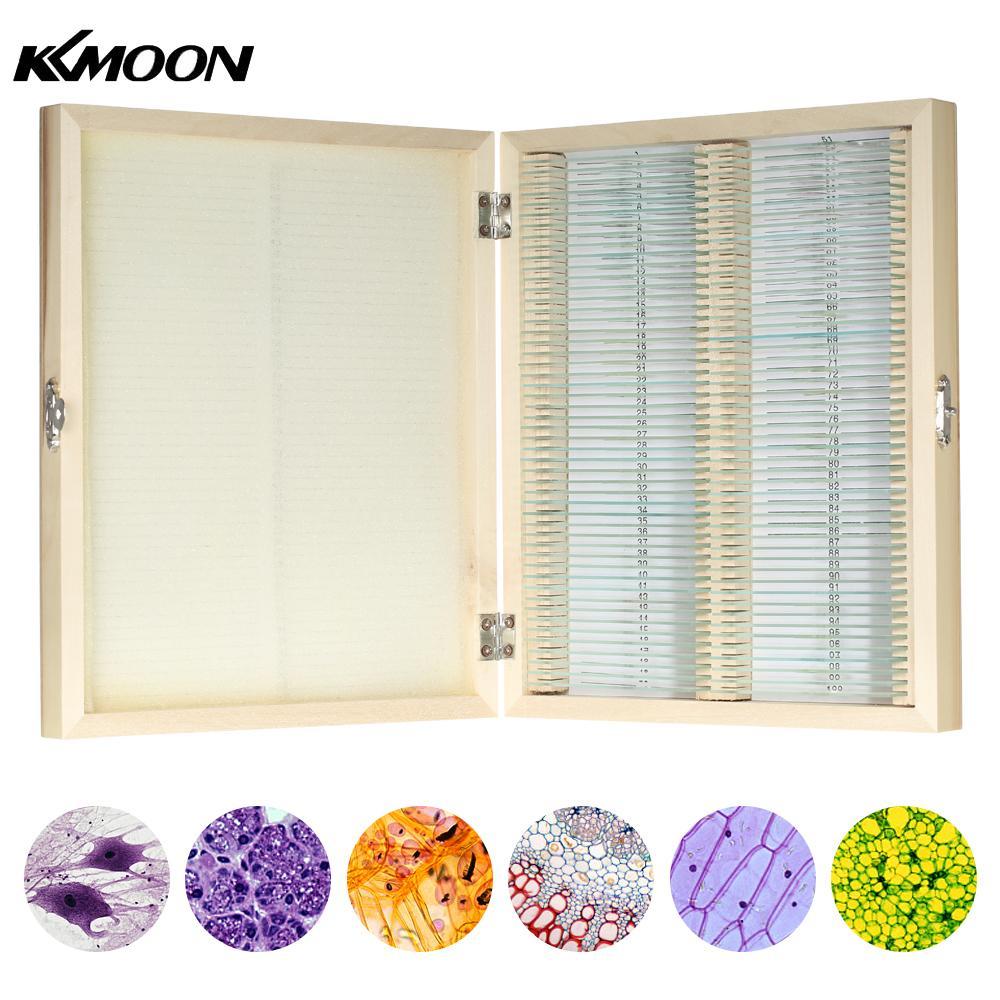 KKmoon 100 pcs/ensemble Préparé Microscope des Animaux Plantes Insectes Tissus Biologique Spécimens Diapositives Ensemble avec Caisse En Bois