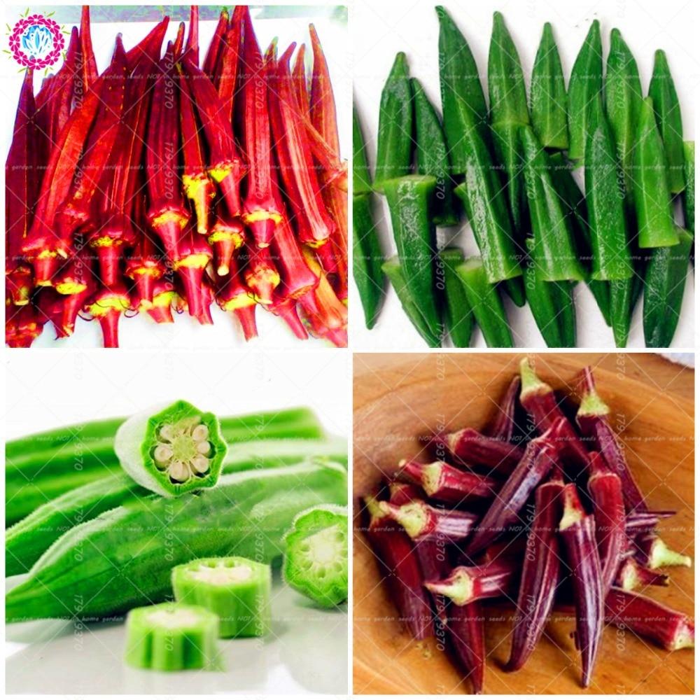 50pcs/bag Okra ,Edible Organic Non GMO fruit vegetable ,Hibiscus esculentus L. flower DIY home garden plant easy grow fonksiyonlu rende