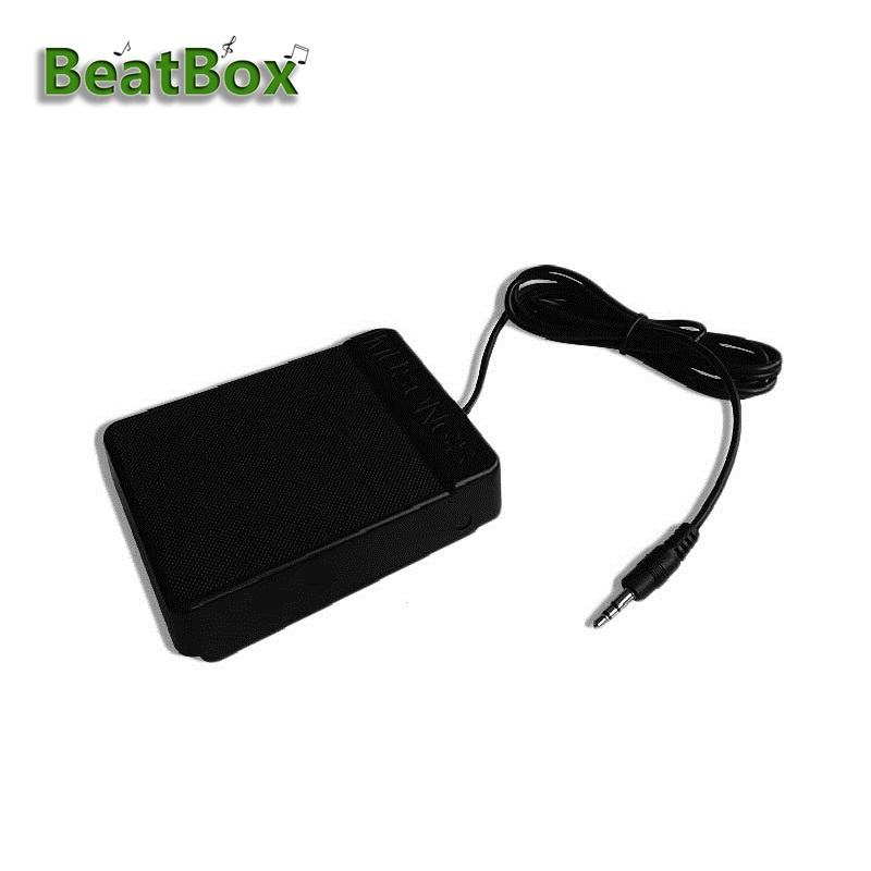BeatBox Universal Electronic Piano Foot Sustain Pedal Controller Switch Compatible Damper Keyboards Musical Acessory